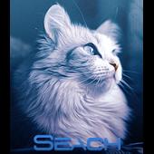 Seach